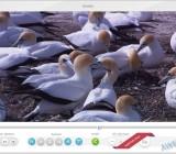 Редактирование видео в Freemake Video Converter
