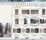 Просмотр фото в FastStoneImageViewer